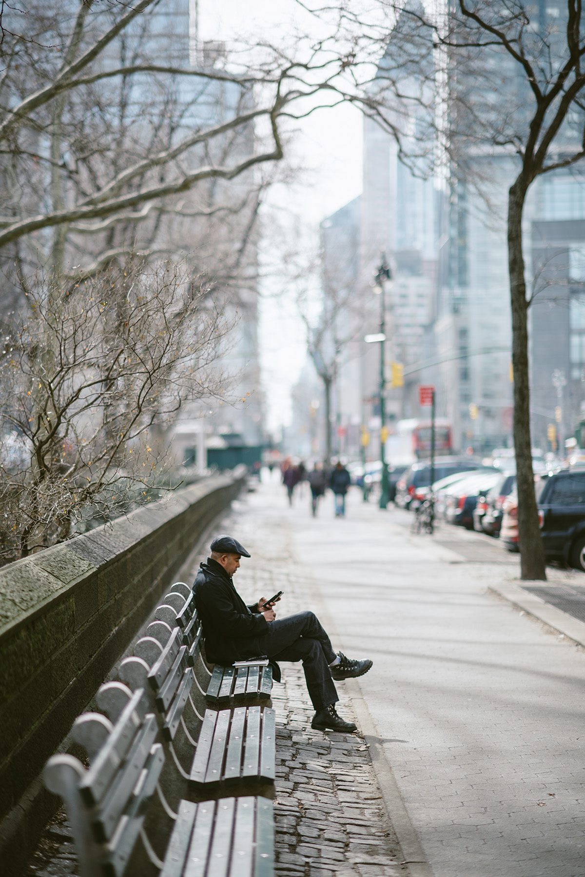 nyc park bench sun