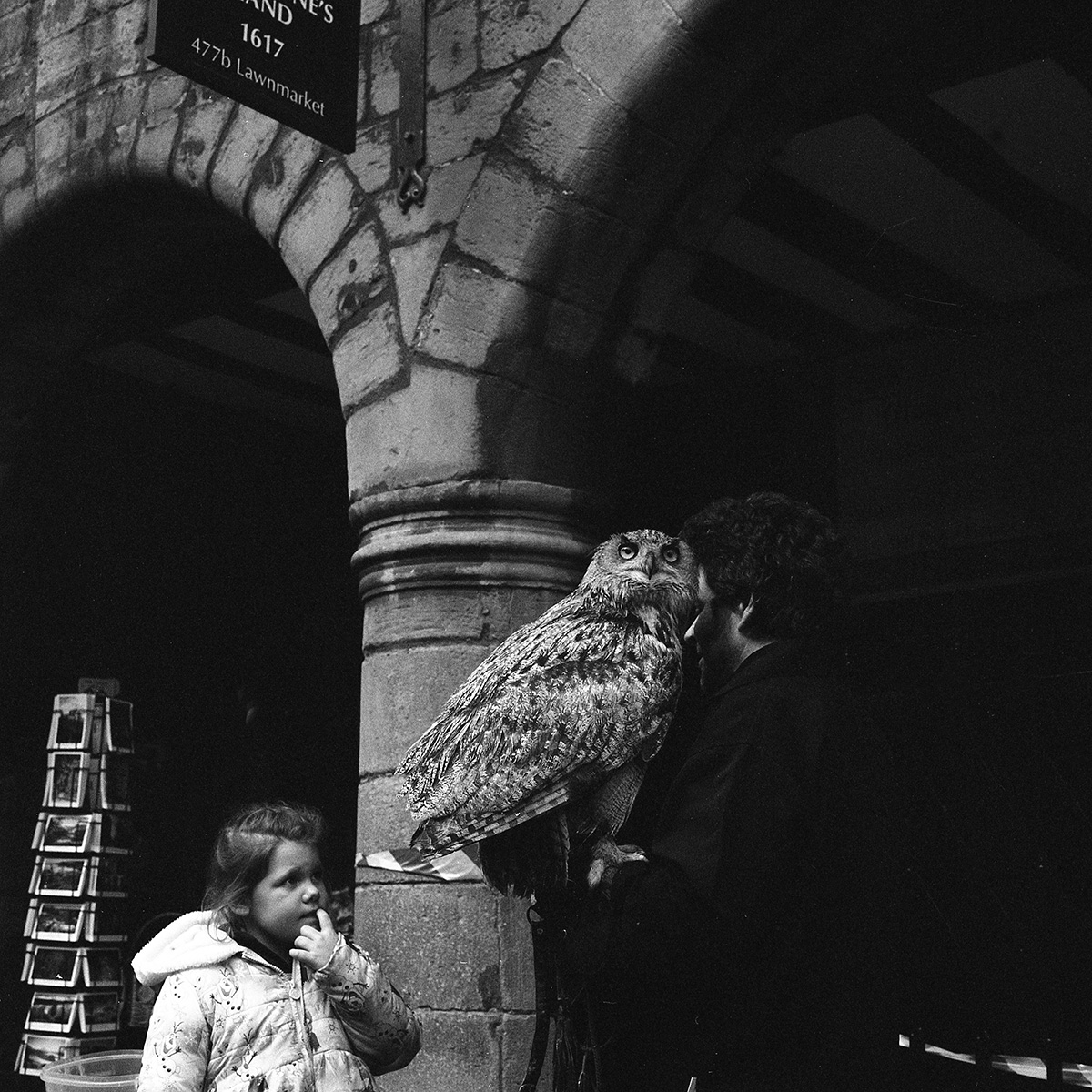 Edinburgh street owl film photography